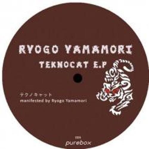 Ryogo Yamamori: Teknocat(Dave-G remix)(Purebox records)