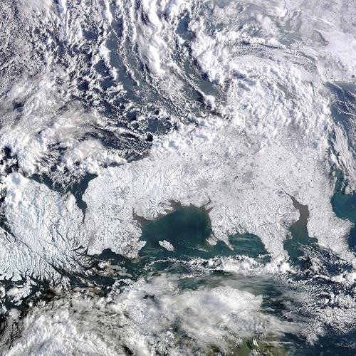 Oscillation: Arctic