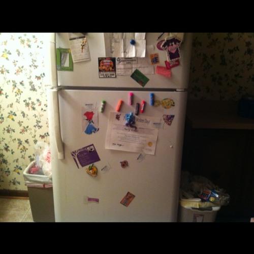 Darth fridgevader