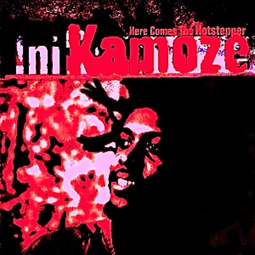 Ini Kamoze-Here Comes The Hotstepper (5thMoon Remix)