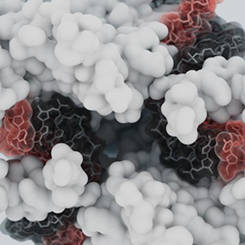 Мобильная ДНК