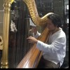 Happy Birthday (play harp for the first time) ^^