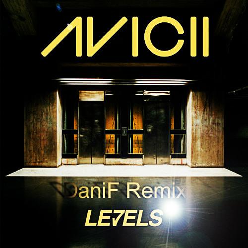 Avicii-levels(DaniF remix)