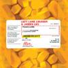 Download Left Lane Cruiser & James Leg - Ramblin' On My Mind Mp3
