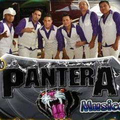 Pantera Musical Mixx By Jhonny