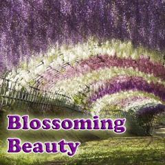 Lu-Chi'sz - Blossoming Beauty (2012)