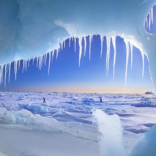Yello Guurl - In The Cold