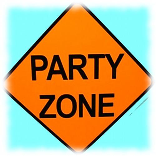 BenSol PartyZone RadioShow 14 april 2012