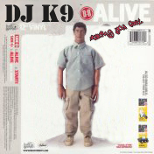 DJ K9 - (Make 'N You Feel Alive) Meshup