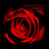 Download Mp3 Red is the Rose