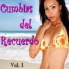 Cumbias Villeras Del Recuerdo Vol. 1 [By Dj Manu Abud]