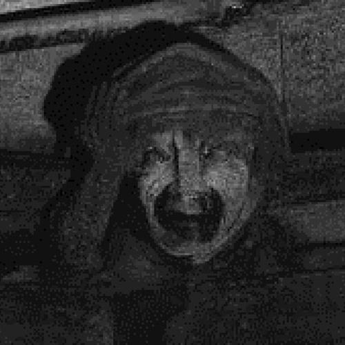 Bodys in the basement