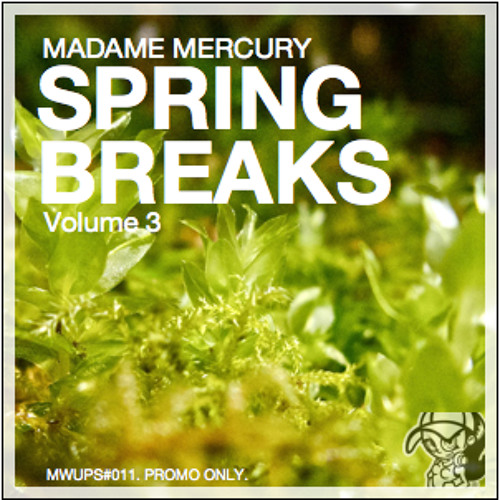 Spring Breaks 3 - DJ Mix