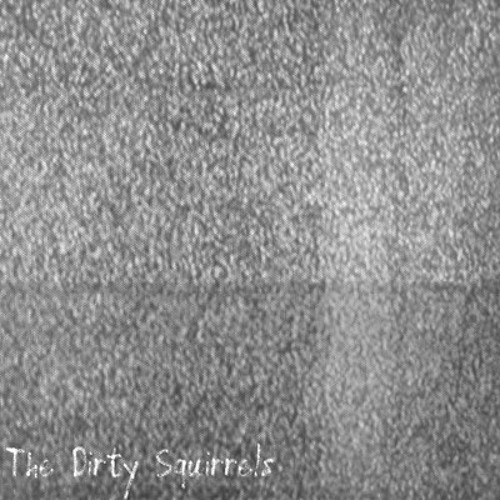 The Dirty Squirrels - Unnamed