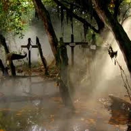 Beneath Murky Waters