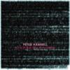 Peter Hammill – Constantly Overheard