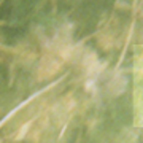 die Nachtstunde: Klangfall / Rivulets [free download]