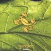Bunglon Feat. Neri Per Caso - Denganmu