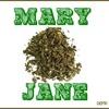 05.Mary Jane - El cielo es verde