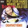 Busta Rhymes - Put Your Hands Where My Eyes Could See (Cheapshot Remix) mp3