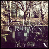 Paper Crows -