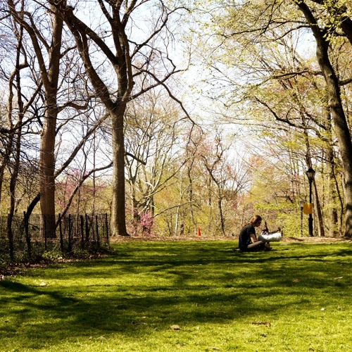 Blogsound: Central Park, New York City