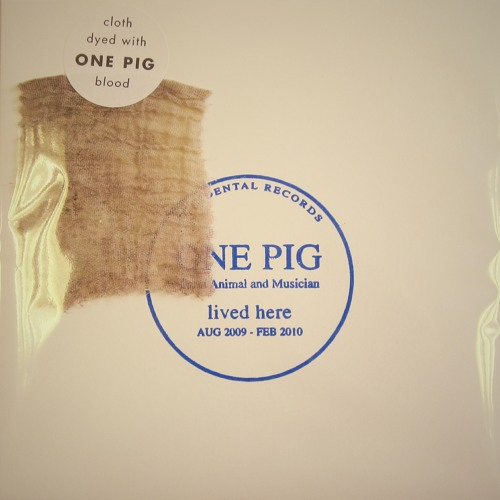 One Pig: a life in 3 minutes