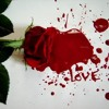 11.Dream's Of Love