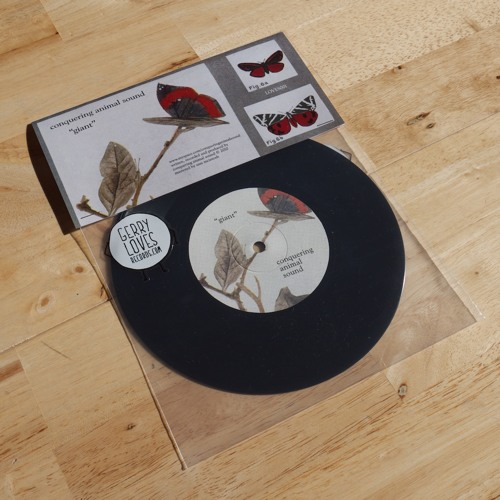 LOVES001 - Conquering Animal Sound / Debutant - Split single
