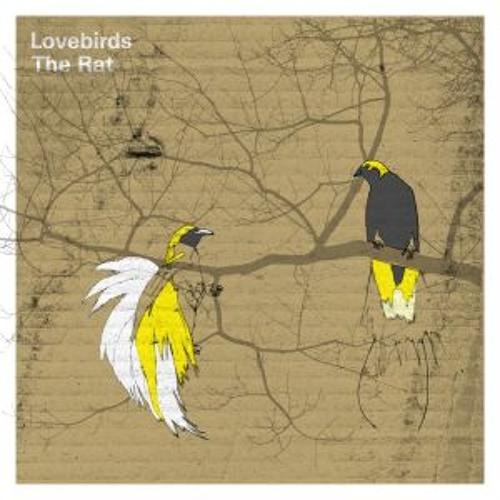 Lovebirds - The Rat (128 kBit)