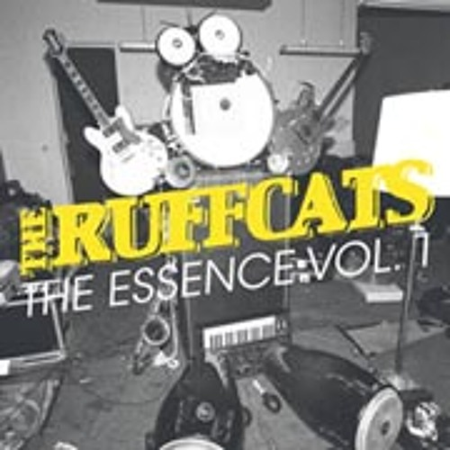 THE RUFFCATS - Dr. Cosmo