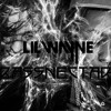 Bass Musik (Lil Wayne VS Bassnectar Mashup)