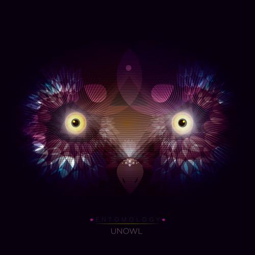 Unowl - 2 hours [from EntomologyEP]