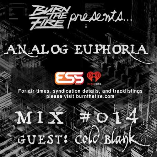 Burn The Fire Radio Show: Analog Euphoria #014 — ft. Cold Blank
