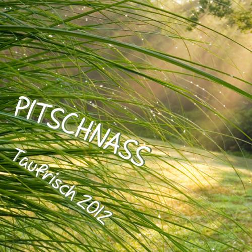 Pitschnass Taufrisch 2012