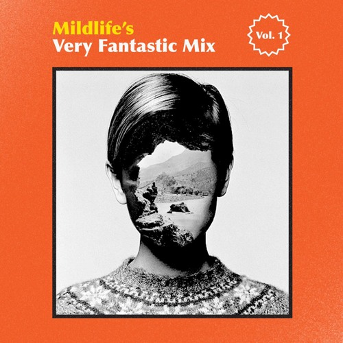 Mildlife's Very Fantastic Mix Vol #1