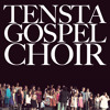 Tensta Gospel Choir - Medley (live 2011)