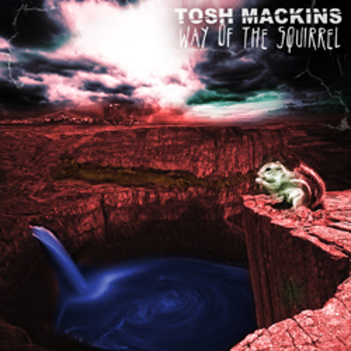 Tosh Mackins - Way of the Squirrel