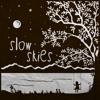 Slow Skies Walk Me Home Album Cover