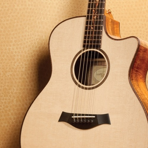 Acoustic Sessions: Pakistani National Anthem