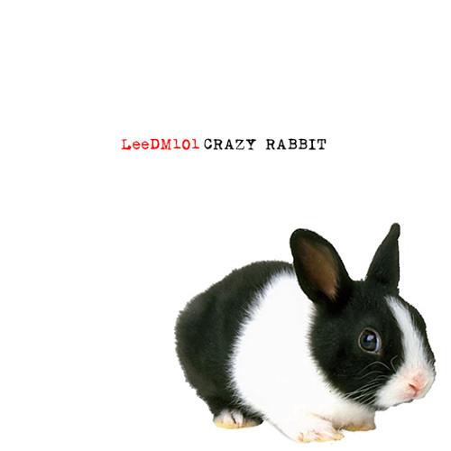 LeeDM101 - Crazy Rabbit (Seal / Radiohead / The Doors / Miles Davis)