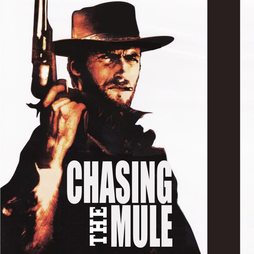 Chasing The Mule