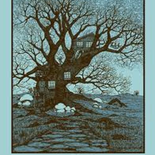 Tree-House Kings