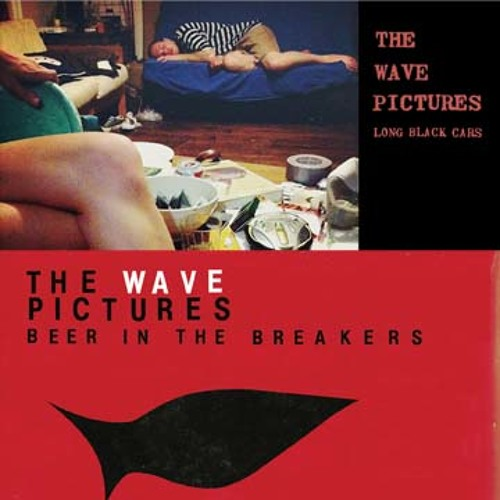 THE WAVE PICTURES -  Stay Here and Take Care of the Chickens