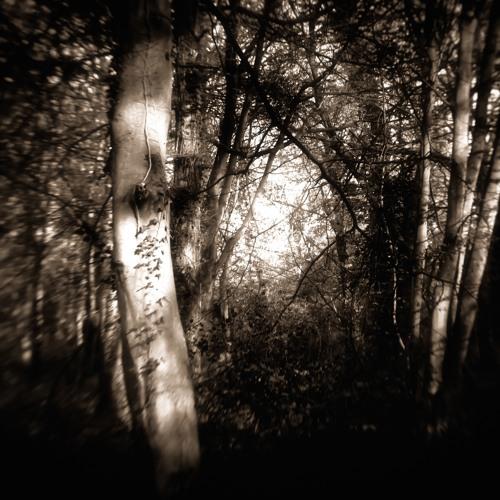 Breaking Light Trees
