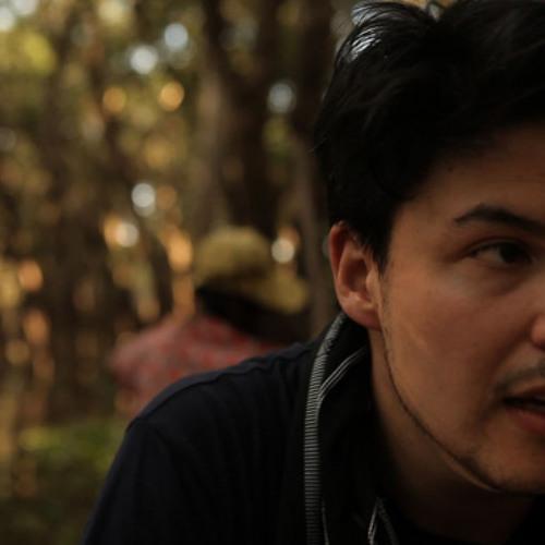 Jamie Woon - Shoulda (Miroslav Pavlovic rmx)
