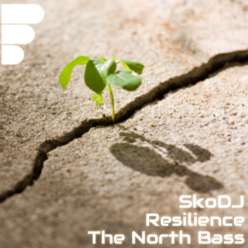 TNB - SkoDJ - Resilience (Original Mix) [OUT NOW]