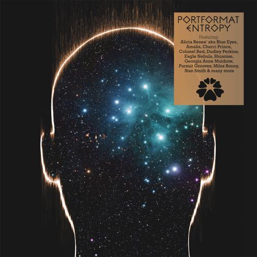 Portformat - Cosmic Rays feat. Pursuit Grooves (preview)