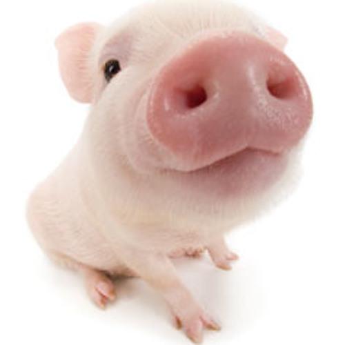 Deadmau5 Vs. Calvin Harris - Let's Fn Go Pig (Tsunami Bootleg)