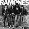 The Ramones - Surfin' Bird
